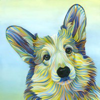 CORGI_Kate_Hoyer